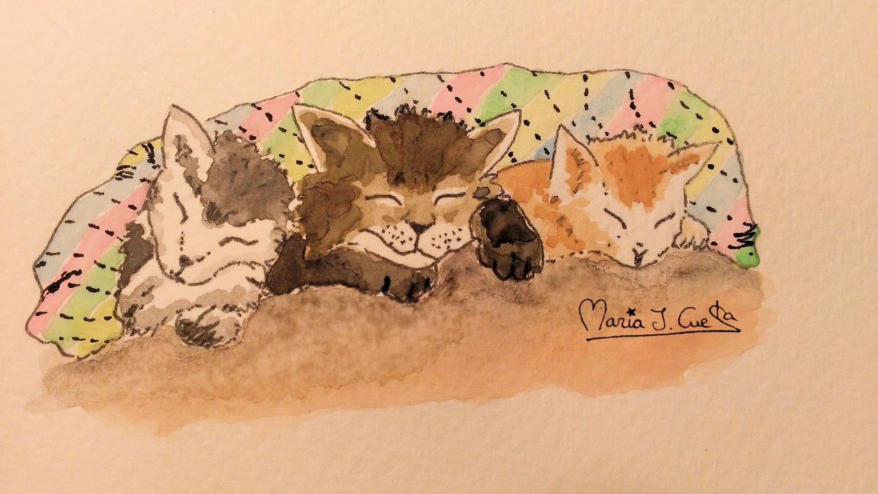Cats Sleeping MariaJCuesta. Children's Books. Art. Illustration.
